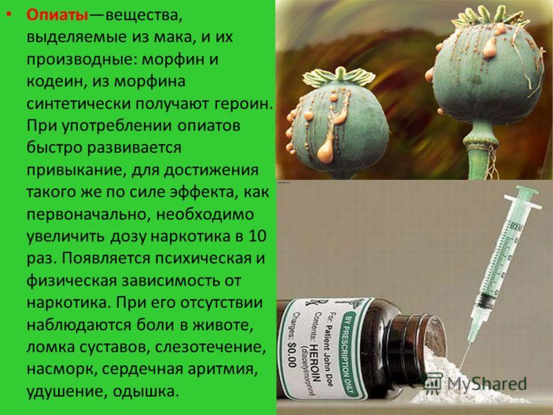 Опиатывещества, выделяемые из мака, и их производные: морфин и кодеин, из морфина синтетически получают героин. При употреблении опиатов быстро развивается привыкание, для достижения такого же по силе эффекта, как первоначально, необходимо увеличить