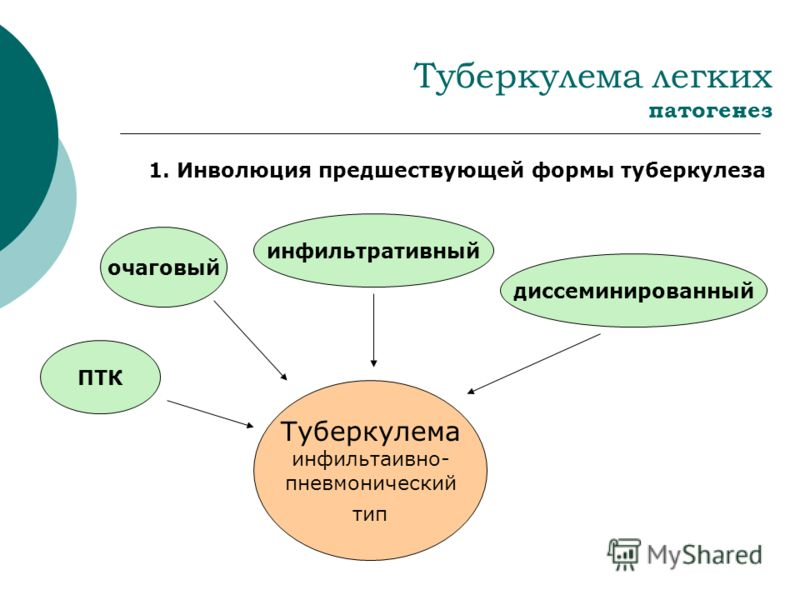 Туберкулема легких патогенез 1. Инволюция предшествующей формы туберкулеза очаговый инфильтративный диссеминированный ПТК Туберкулема инфильтаивно- пневмонический тип