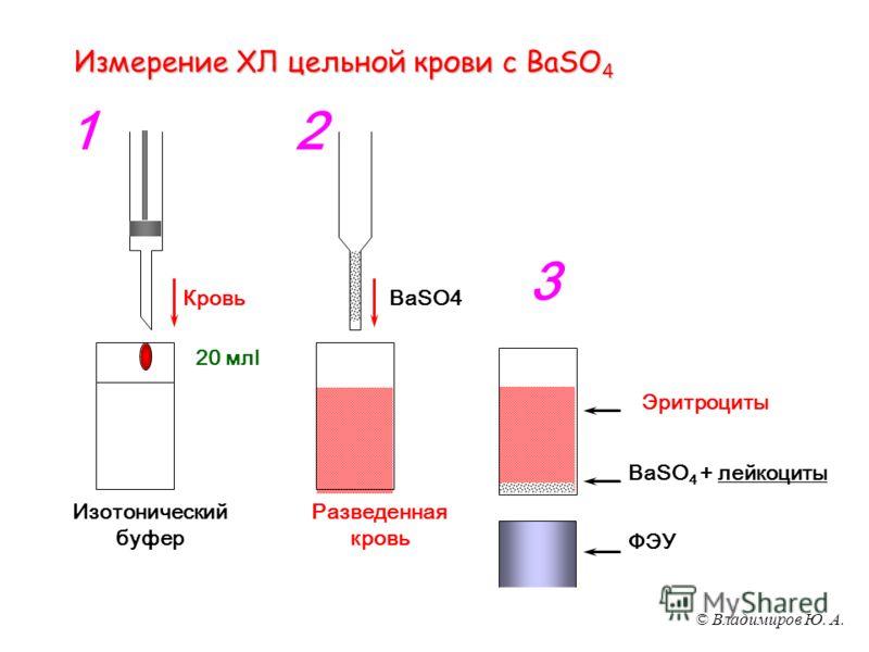 © Владимиров Ю. А. Измерение ХЛ цельной крови с BaSO 4 Изотонический буфер 20 млl Кровь 1 BaSO4 Разведенная кровь 2 BaSO 4 + лейкоциты Эритроциты ФЭУ 3