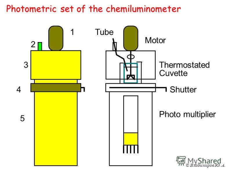 © Владимиров Ю. А. Photometric set of the chemiluminometer Motor Tube Thermostated Cuvette Shutter Photo multiplier 1 2 3 4 5