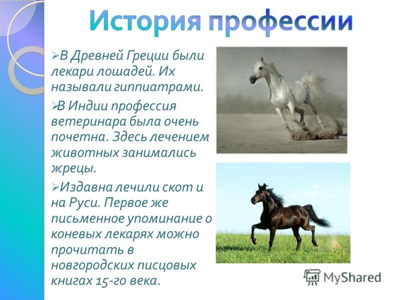 В Древней Греции были лекари лошадей. Их называли гиппиатрами. В Индии профессия ветеринара была очень почетна. Здесь лечением животных занимались жрецы. Издавна лечили скот и на Руси. Первое же письменное упоминание о коневых лекарях можно прочитать