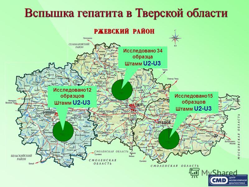 Исследовано12 образцов Штамм U2-U3 Исследовано 34 образца Штамм U2-U3 Исследовано15 образцов Штамм U2-U3 Вспышка гепатита в Тверской области
