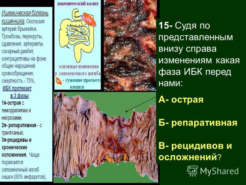 15- Судя по представленным внизу справа изменениям какая фаза ИБК перед нами: А- острая Б- репаративная В- рецидивов и осложнений ?