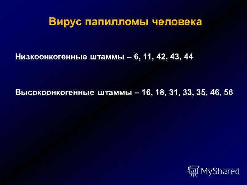 Вирус папилломы человека Низкоонкогенные штаммы – 6, 11, 42, 43, 44 Высокоонкогенные штаммы – 16, 18, 31, 33, 35, 46, 56