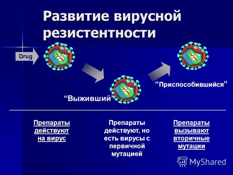 Развитие вирусной резистентности Drug Выживший Приспособившийся Препараты действуют на вирус Препараты действуют, но есть вирусы с первичной мутацией Препараты вызывают вторичные мутации
