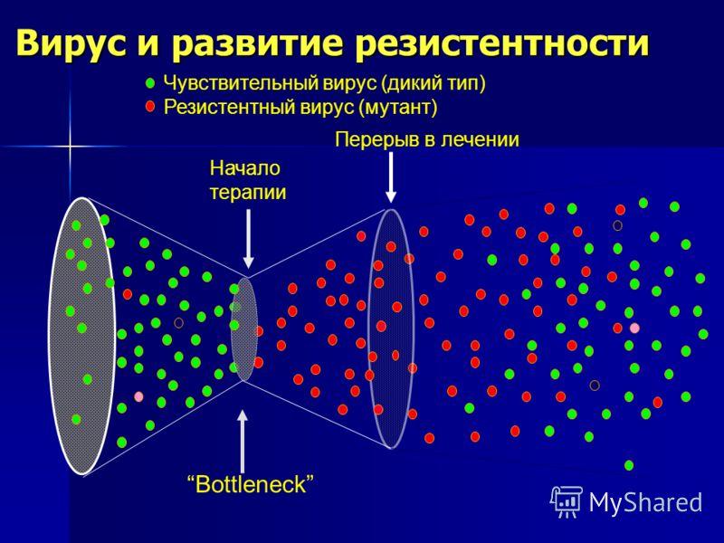 Вирус и развитие резистентности Чувствительный вирус (дикий тип) Резистентный вирус (мутант) Начало терапии Перерыв в лечении Bottleneck