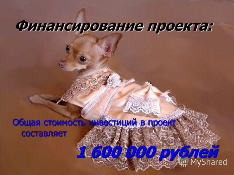 Финансирование проекта: Общая стоимость инвестиций в проект составляет 1 600 000 рублей 1 600 000 рублей