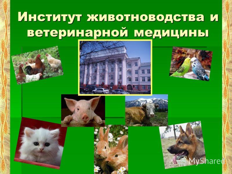 Институт животноводства и ветеринарной медицины