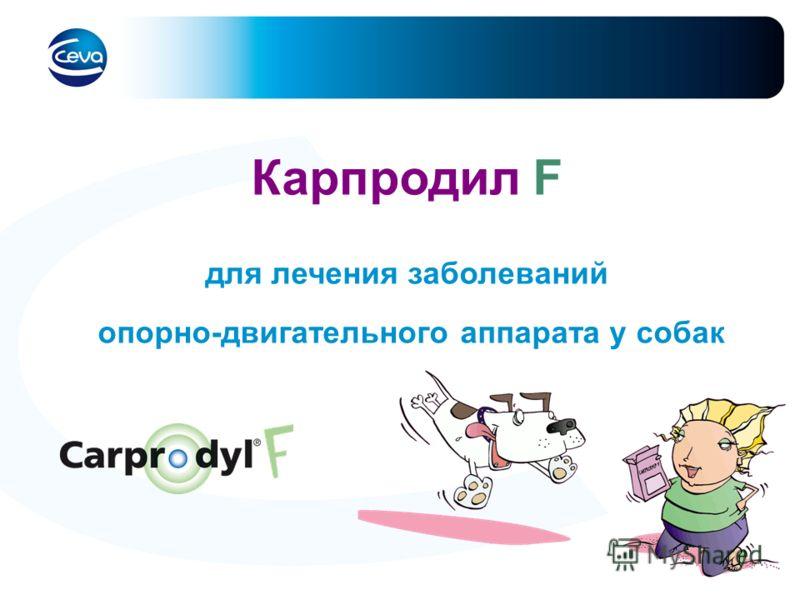 Карпродил F для лечения заболеваний опорно-двигательного аппарата у собак