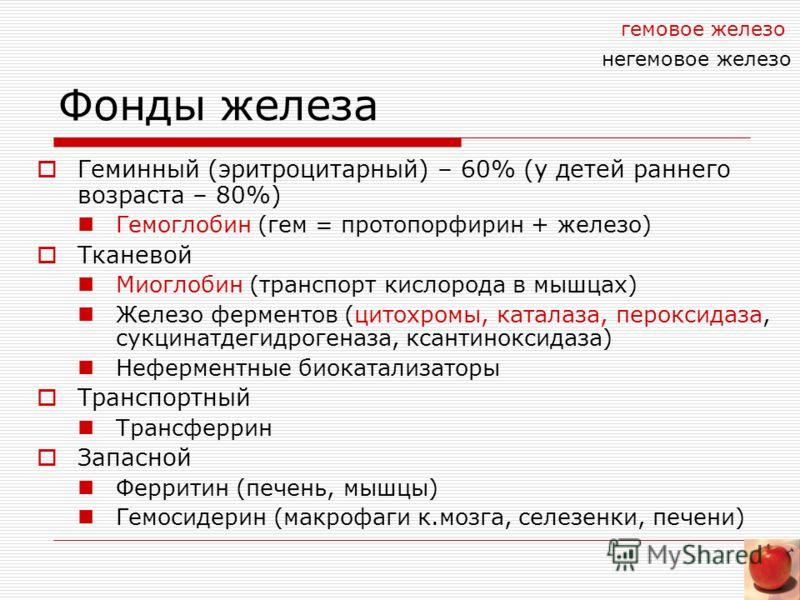 Фонды железа Геминный (эритроцитарный) – 60% (у детей раннего возраста – 80%) Гемоглобин (гем = протопорфирин + железо) Тканевой Миоглобин (транспорт
