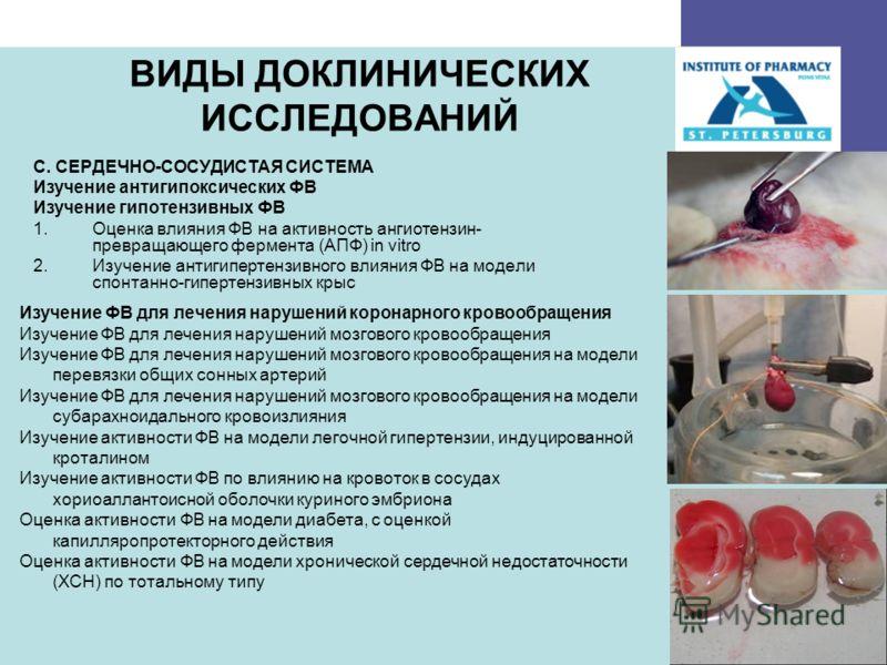 23 ВИДЫ ДОКЛИНИЧЕСКИХ ИССЛЕДОВАНИЙ C. СЕРДЕЧНО-СОСУДИСТАЯ СИСТЕМА Изучение антигипоксических ФВ Изучение гипотензивных ФВ 1.Оценка влияния ФВ на активность ангиотензин- превращающего фермента (АПФ) in vitro 2.Изучение антигипертензивного влияния ФВ н