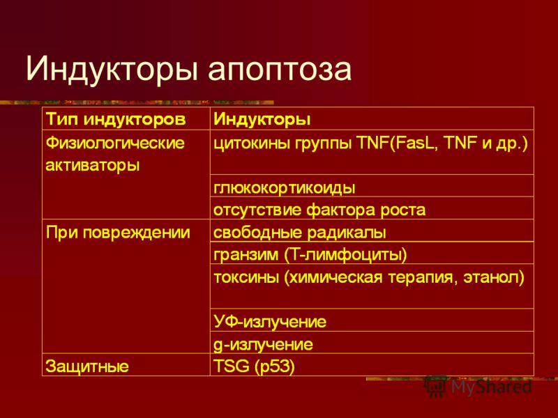 Индукторы апоптоза