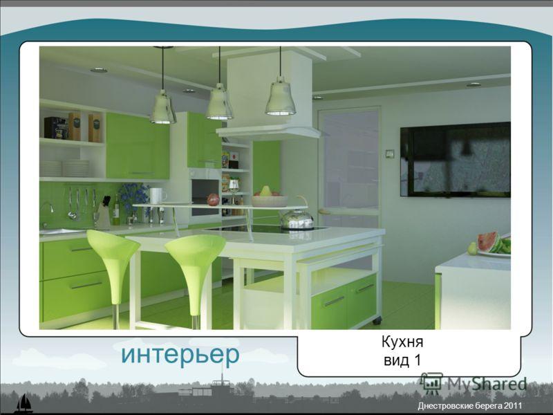 Днестровские берега 2011 Кухня вид 1 интерьер