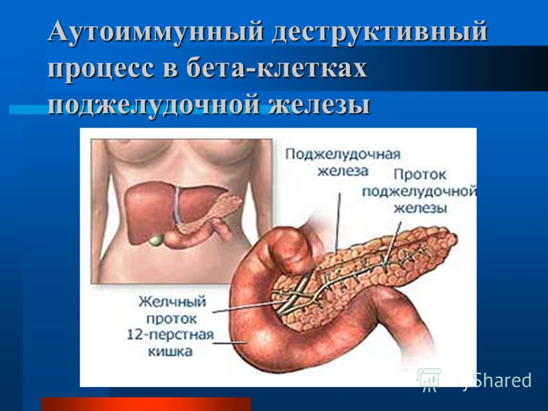 лечение корой осины от паразитов
