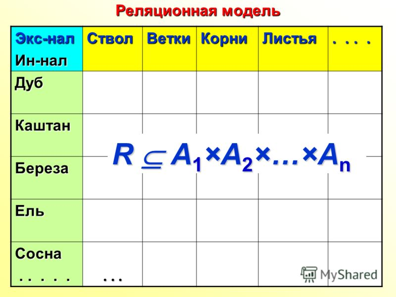 Реляционная модель Экс-налИн-налСтволВеткиКорниЛистья.... Дуб Каштан Береза Ель Сосна............. R А 1 ×А 2 ×…×А n
