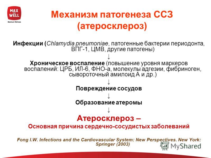 Механизм патогенеза ССЗ (атеросклероз) Инфекции (Chlamydia pneumoniae, патогенные бактерии периодонта, ВПГ-1, ЦМВ, другие патогены) Хроническое воспаление (повышение уровня маркеров воспалений: ЦРБ, ИЛ-6, ФНО-a, молекулы адгезии, фибриноген, сыворото