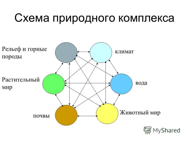 Схема природного комплекса