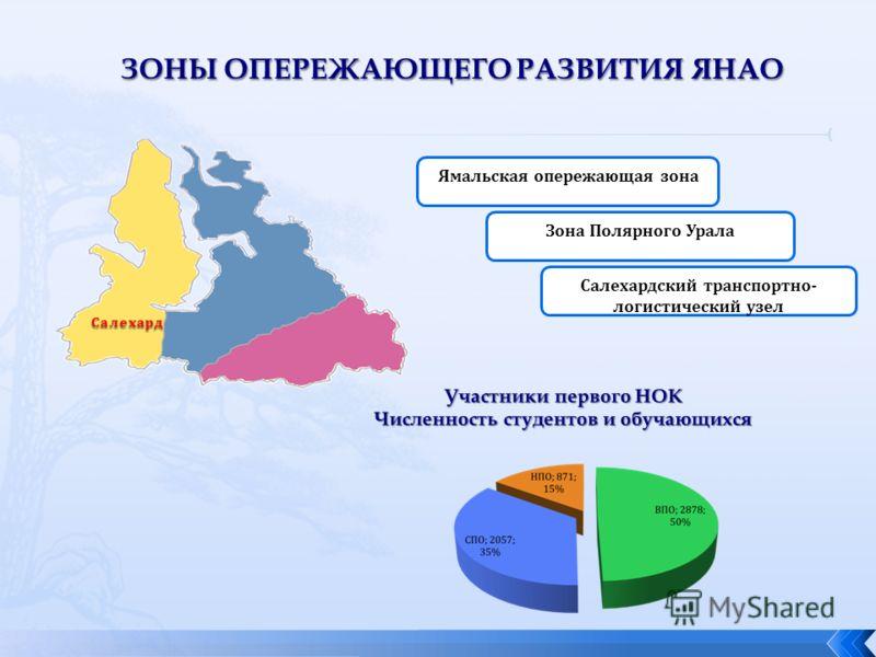 Ямальская опережающая зона Зона Полярного Урала Салехардский транспортно- логистический узел Салехард