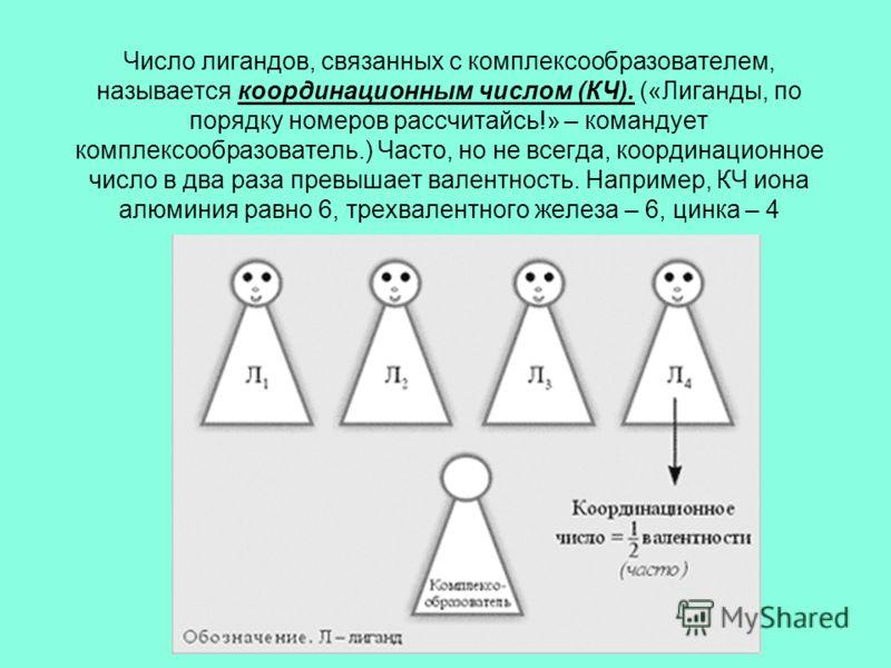 Число лигандов, связанных с комплексообразователем, называется координационным числом (КЧ). («Лиганды, по порядку номеров рассчитайсь!» – командует комплексообразователь.) Часто, но не всегда, координационное число в два раза превышает валентность. Н