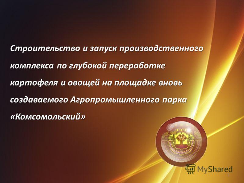 Строительство и запуск производственного комплекса по глубокой переработке картофеля и овощей на площадке вновь создаваемого Агропромышленного парка «Комсомольский» 1