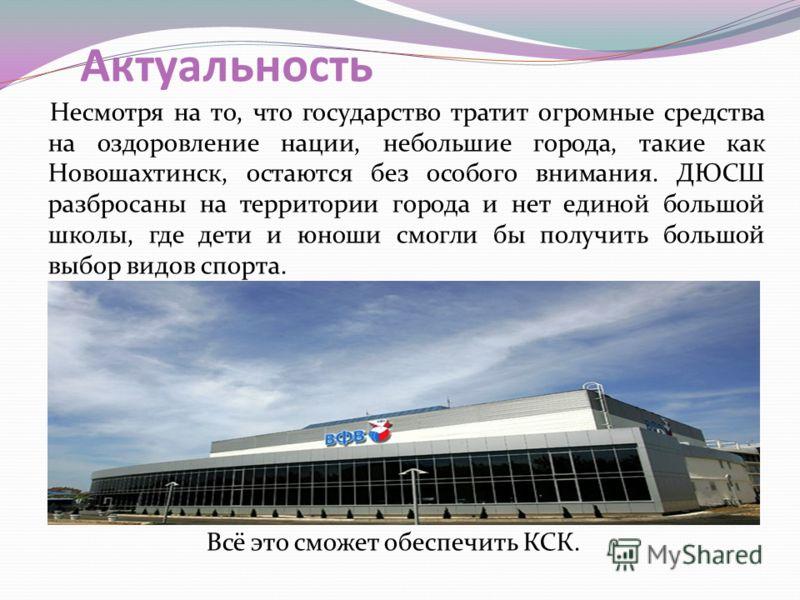 Актуальность Несмотря на то, что государство тратит огромные средства на оздоровление нации, небольшие города, такие как Новошахтинск, остаются без особого внимания. ДЮСШ разбросаны на территории города и нет единой большой школы, где дети и юноши см