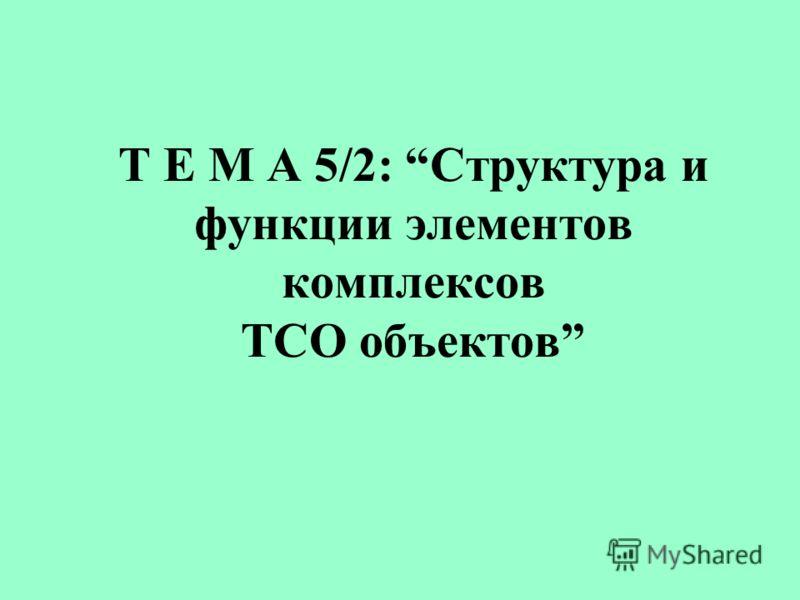 Т Е М А 5/2: Структура и функции элементов комплексов ТСО объектов