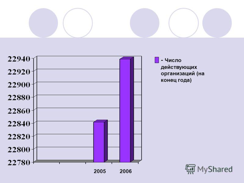 2005 2006 - Число действующих организаций (на конец года)