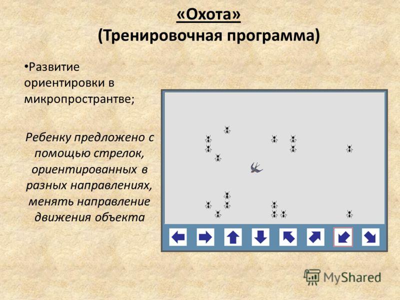 «Охота» (Тренировочная программа) Развитие ориентировки в микропространтве; Ребенку предложено с помощью стрелок, ориентированных в разных направлениях, менять направление движения объекта