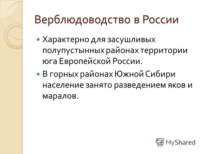 Верблюдоводство в России Характерно для засушливых полупустынных районах территории юга Европейской России. В горных районах Южной Сибири население занято разведением яков и маралов.