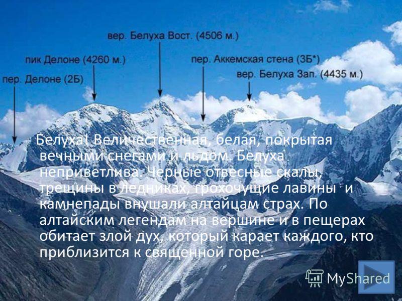 Белуха! Величественная, белая, покрытая вечными снегами и льдом. Белуха неприветлива. Черные отвесные скалы, трещины в ледниках, грохочущие лавины и камнепады внушали алтайцам страх. По алтайским легендам на вершине и в пещерах обитает злой дух, кото