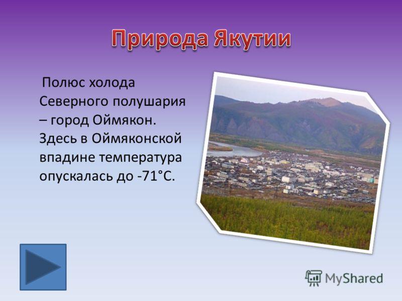 Полюс холода Северного полушария – город Оймякон. Здесь в Оймяконской впадине температура опускалась до -71°С.