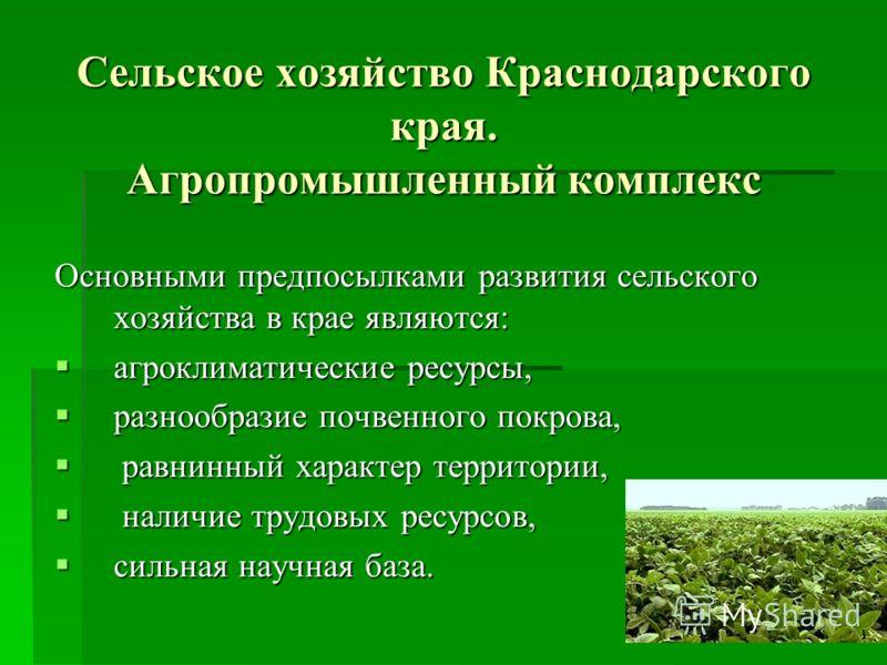 Сельское хозяйство Краснодарского края. Агропромышленный комплекс Основными предпосылками развития сельского хозяйства в крае являются: агроклиматические ресурсы, агроклиматические ресурсы, разнообразие почвенного покрова, разнообразие почвенного пок