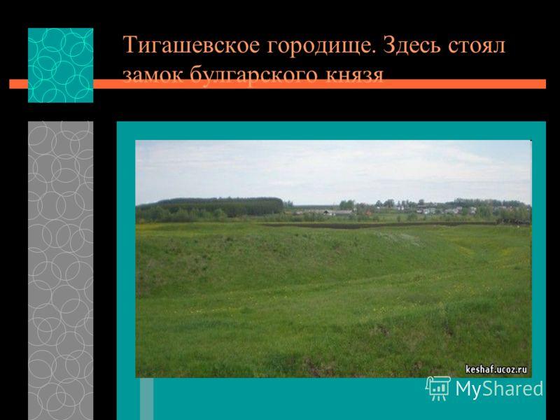 Тигашевское городище. Здесь стоял замок булгарского князя