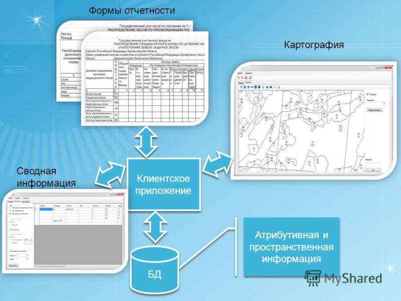 Атрибутивная и пространственная информация БД Клиентское приложение Клиентское приложение Картография Формы отчетности Сводная информация