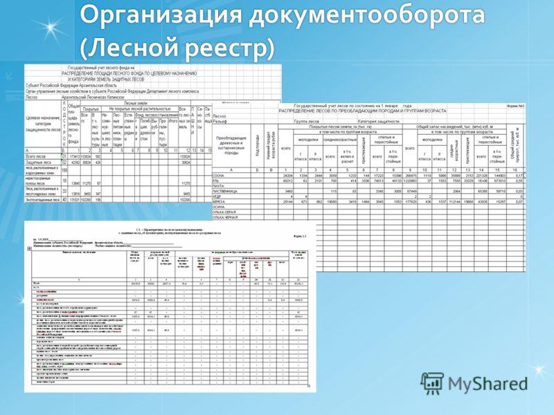 Организация документооборота (Лесной реестр)