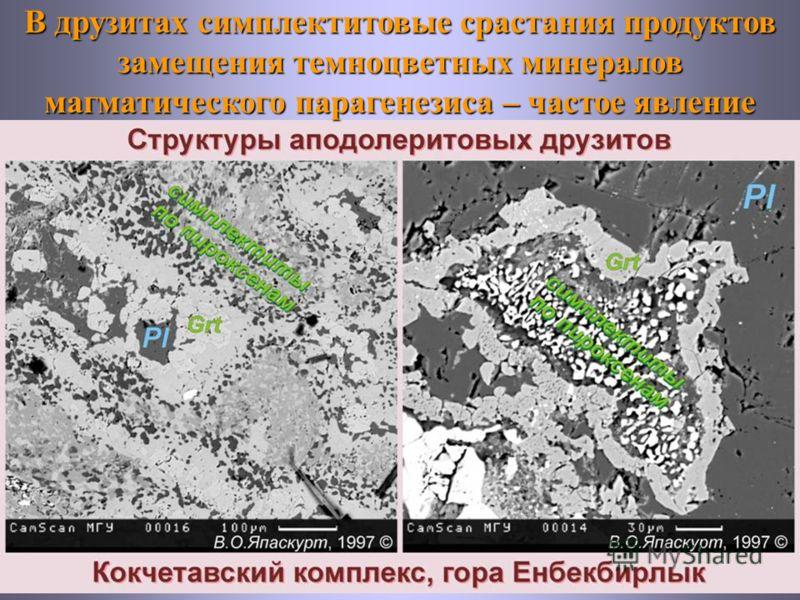 В друзитах симплектитовые срастания продуктов замещения темноцветных минералов магматического парагенезиса – частое явление