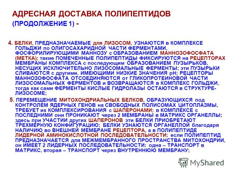 АДРЕСНАЯ ДОСТАВКА ПОЛИПЕПТИДОВ (ПРОДОЛЖЕНИЕ 1) - 4. БЕЛКИ, ПРЕДНАЗНАЧАЕМЫЕ для ЛИЗОСОМ, УЗНАЮТСЯ в КОМПЛЕКСЕ ГОЛЬДЖИ по ОЛИГОСАХАРИДНОЙ ЧАСТИ ФЕРМЕНТАМИ, ФОСФОРИЛИРУЮЩИМИ МАННОЗУ с ОБРАЗОВАНИЕМ МАННОЗОФОСФАТА (МЕТКА); такие ПОМЕЧЕННЫЕ ПОЛИПЕПТИДЫ ФИК