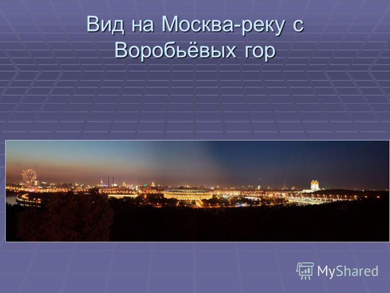Вид на Москва-реку с Воробьёвых гор