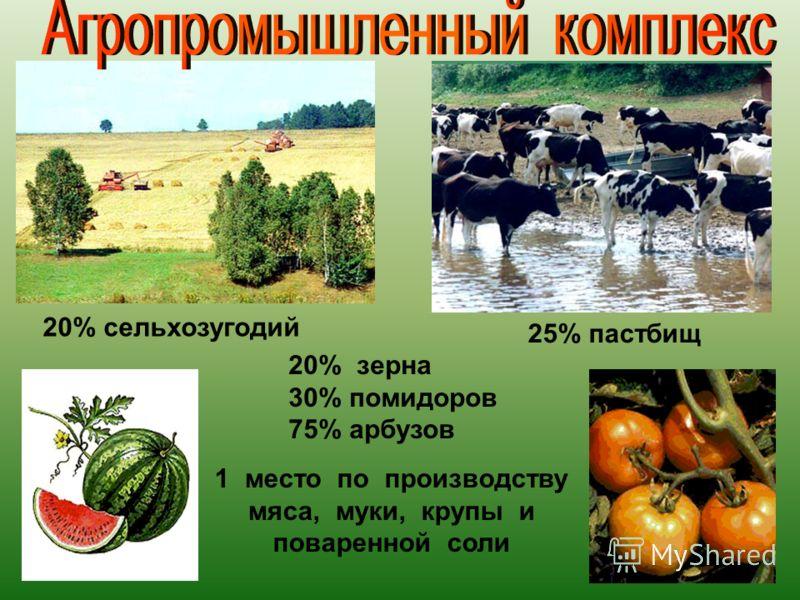 20% сельхозугодий 25% пастбищ 20% зерна 30% помидоров 75% арбузов 1место по производству мяса, муки, крупы и поваренной соли
