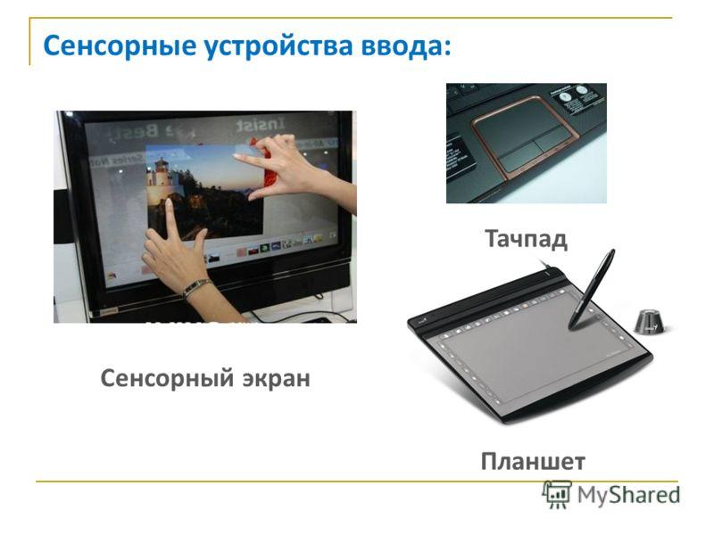 Сенсорные устройства ввода: Сенсорный экран Тачпад Планшет