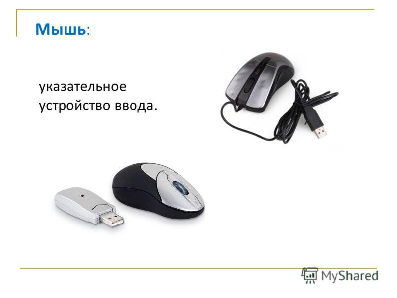 указательное устройство ввода. Мышь: