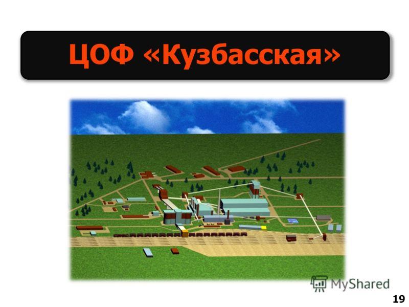 ЦОФ «Кузбасская» 19