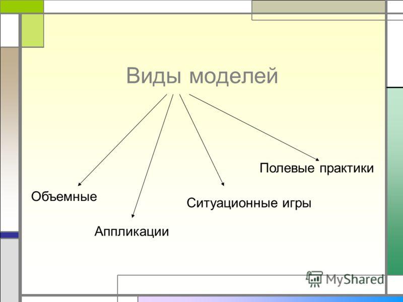 Виды моделей Объемные Аппликации Ситуационные игры Полевые практики