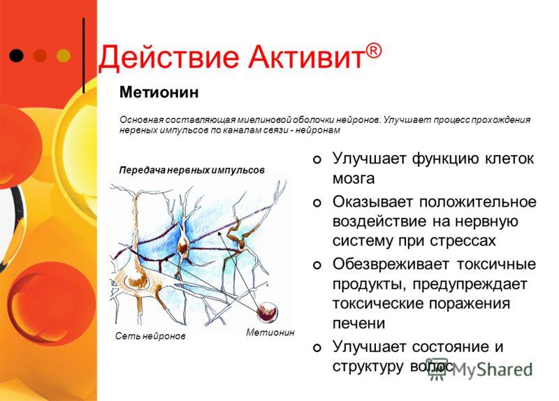 Действие Активит ® Улучшает функцию клеток мозга Оказывает положительное воздействие на нервную систему при стрессах Обезвреживает токсичные продукты, предупреждает токсические поражения печени Улучшает состояние и структуру волос Основная составляющ