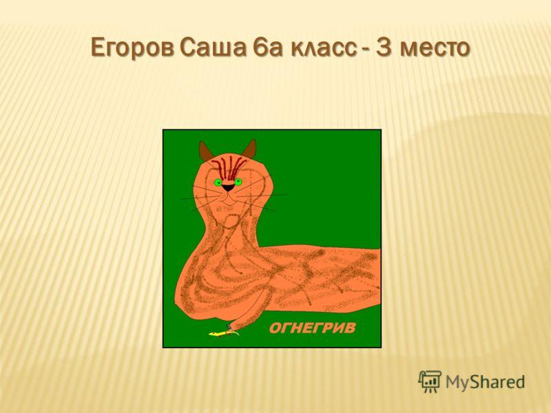 Егоров Саша 6а класс - 3 место