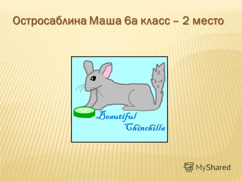 Остросаблина Маша 6а класс – 2 место