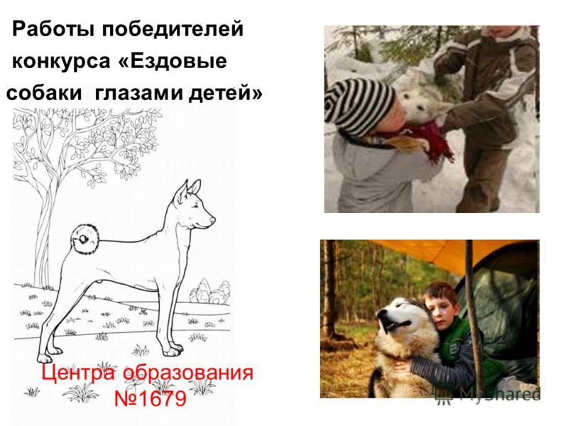 Работы победителей конкурса «Ездовые собаки глазами детей» Центра образования 1679