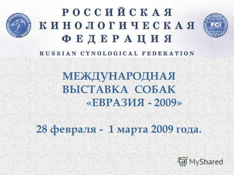 МЕЖДУНАРОДНАЯ ВЫСТАВКА СОБАК «ЕВРАЗИЯ - 2009» 28 февраля - 1 марта 2009 года.