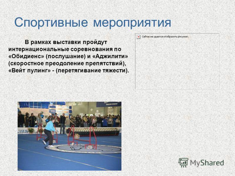 Спортивные мероприятия В рамках выставки пройдут интернациональные соревнования по «Обидиенс» (послушание) и «Аджилити» (скоростное преодоление препятствий), «Вейт пулинг» - (перетягивание тяжести).