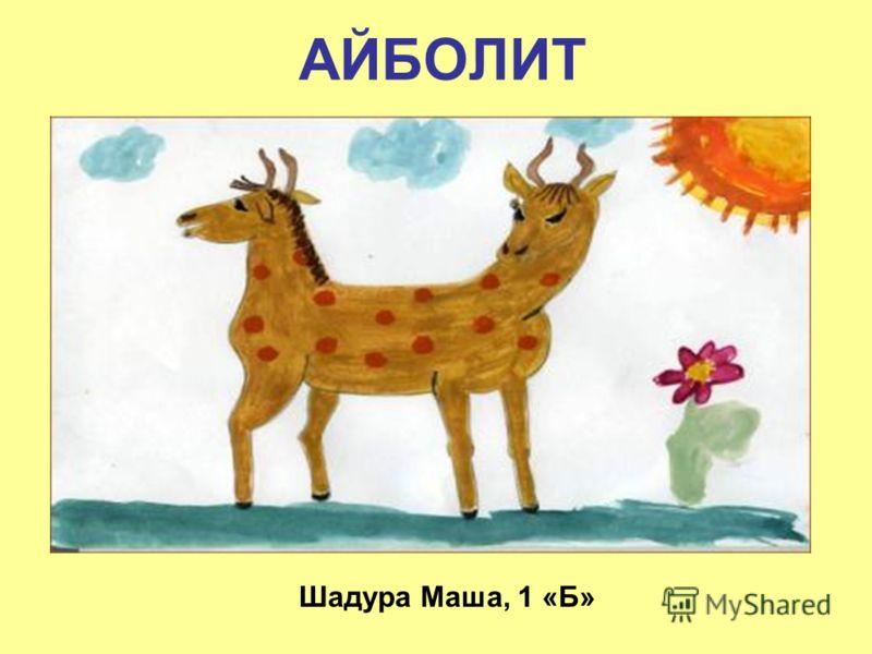 АЙБОЛИТ Шадура Маша, 1 «Б»
